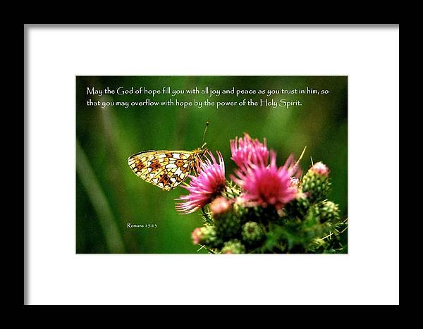 Butterfly Symbol Of Hope Framed Print By Nigel Radcliffe
