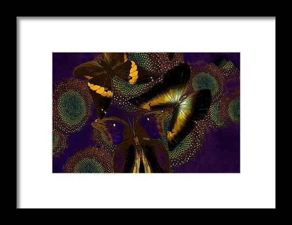 Butterfly Framed Print featuring the digital art Butterfly Worlds by Joseph Mosley