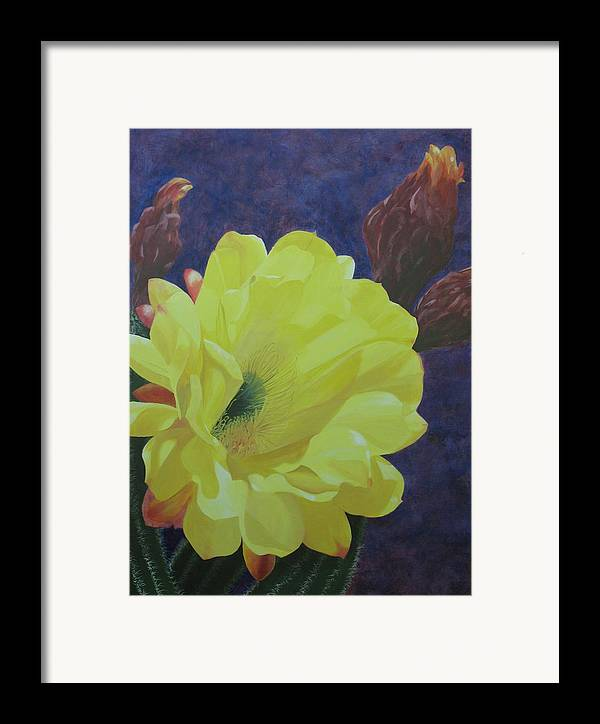 Argentine Cactus Bloom Framed Print featuring the painting Cactus Morning by Janis Mock-Jones