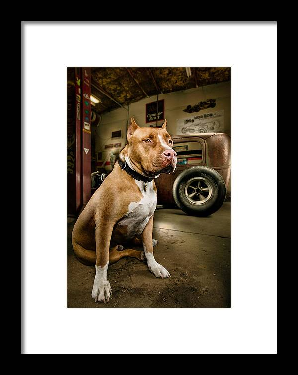 Hotrod Framed Print featuring the photograph Caesar At Millers Chop Shop by Yo Pedro