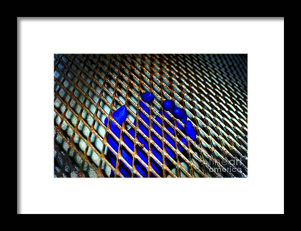 Grasp Framed Print featuring the photograph Caged by The Stone Age