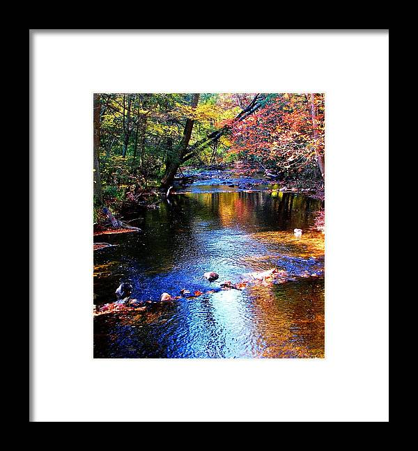 Creek Framed Print featuring the photograph Caledonia In Autumn by Angela Davies