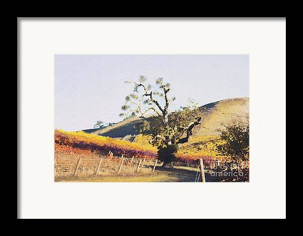 California Wine Country Framed Print featuring the painting California Vineyard Series Oaks In The Vineyard by Artist and Photographer Laura Wrede