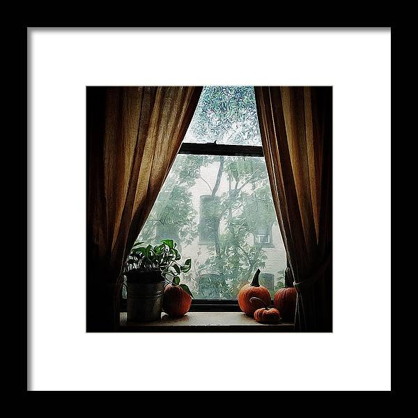 Window Framed Print featuring the photograph Calm Before The Storm by Natasha Marco