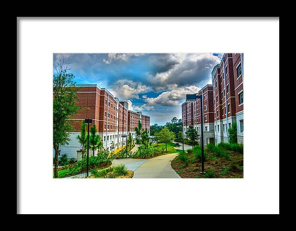 Uwf Framed Print featuring the photograph Campus Life by Jon Cody