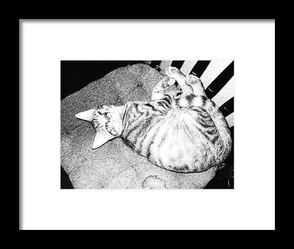Cat Framed Print featuring the digital art Can I Have My Nap by Eric Forster