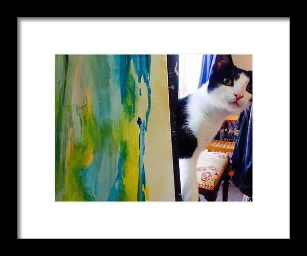 Cat Framed Print featuring the painting Can We Play Now by Judith Desrosiers