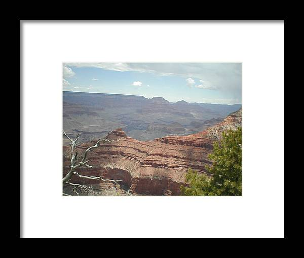 Rock Framed Print featuring the photograph Canyon Rock by Minnie Davis