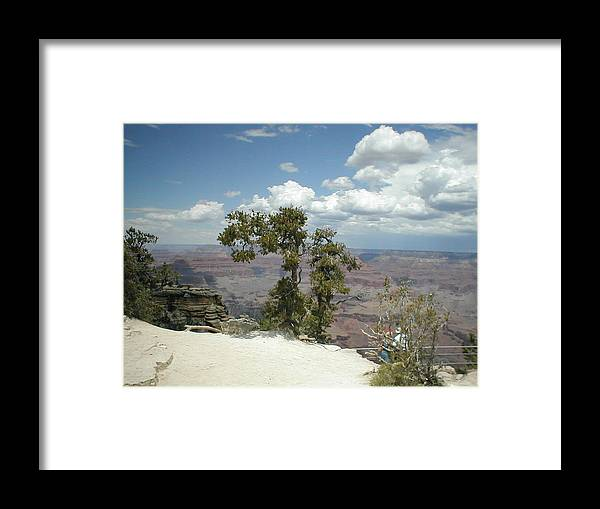 Green Trees Framed Print featuring the photograph Canyon View by Minnie Davis