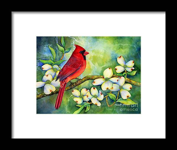 Cardinal Framed Print featuring the painting Cardinal on Dogwood by Hailey E Herrera