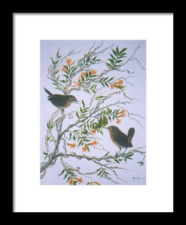 Bird; Flowers Framed Print featuring the painting Carolina Wren And Jasmine by Ben Kiger