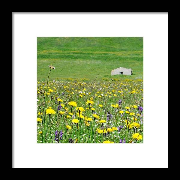 Love Framed Print featuring the photograph Castelluccio by Emanuela Carratoni