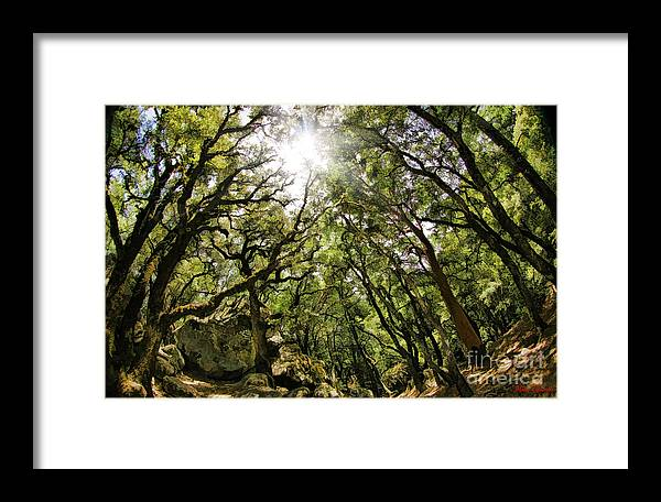 Framed Print featuring the photograph Castle Rock State Park Sun Rise by Blake Richards