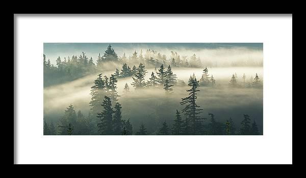 Fog Framed Print featuring the photograph Castles In The Fog by Manju Shekhar
