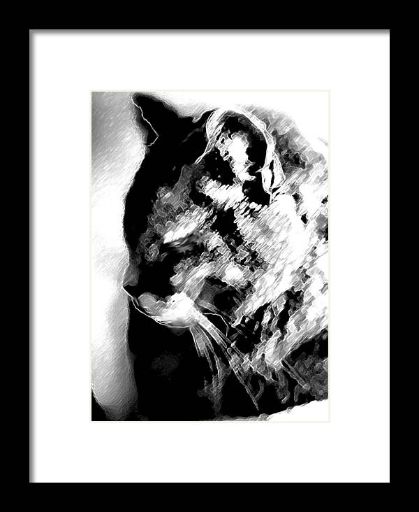 Computer Graphic Framed Print featuring the digital art Cat Profile by Ruth Renshaw