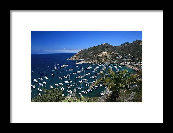 Landscape Framed Print featuring the photograph Catalina by Scott Cunningham