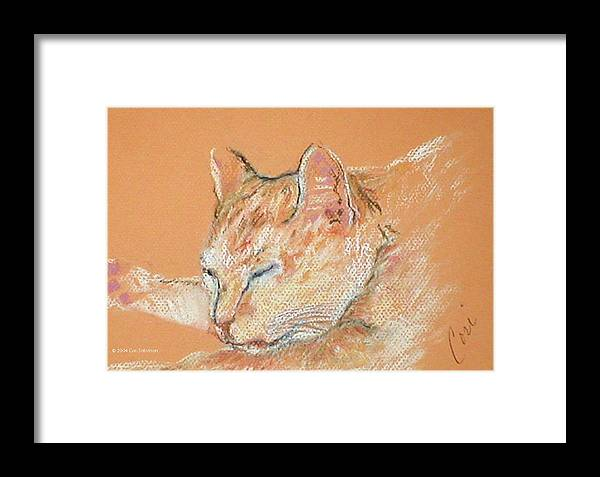 Cat Framed Print featuring the drawing Catnap by Cori Solomon