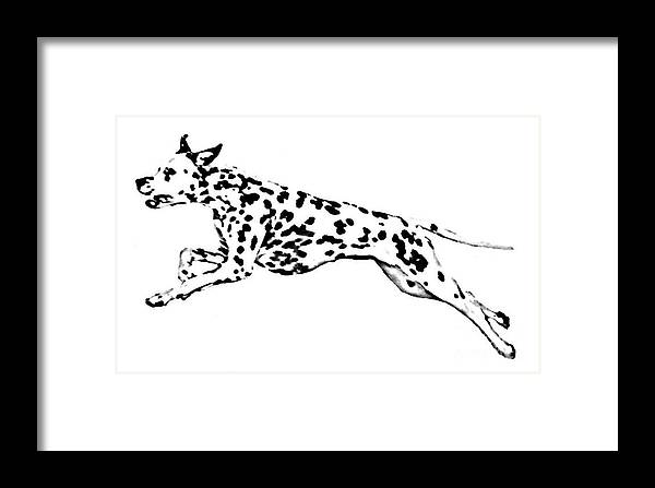 Dogs Framed Print featuring the drawing Celebrate by Jacki McGovern