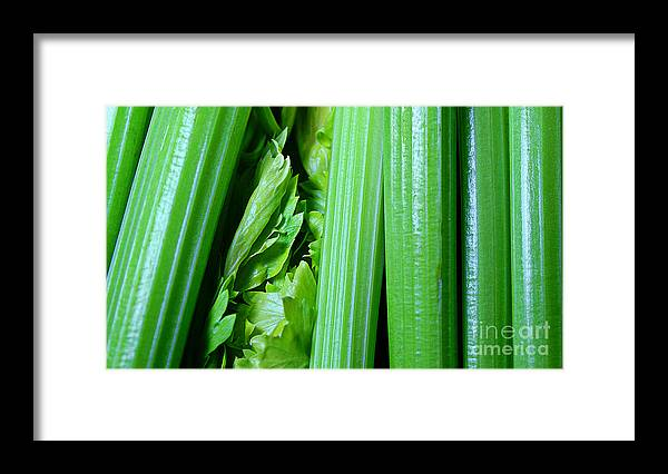 Celery Framed Print featuring the photograph Celery Sticks - Food - Snaclk by Barbara Griffin