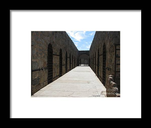 Patzer Framed Print featuring the photograph Cells by Greg Patzer