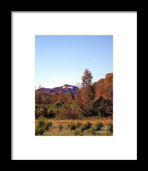 Scenic Tours Framed Print featuring the photograph Cesars Head In The Fall by Skip Willits