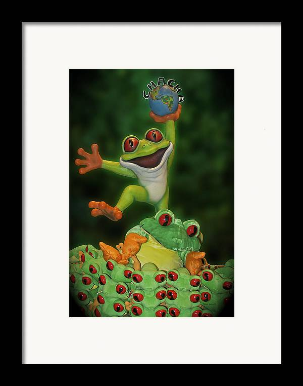 Signs Framed Print featuring the photograph Cha Cha Sign by Thomas Woolworth