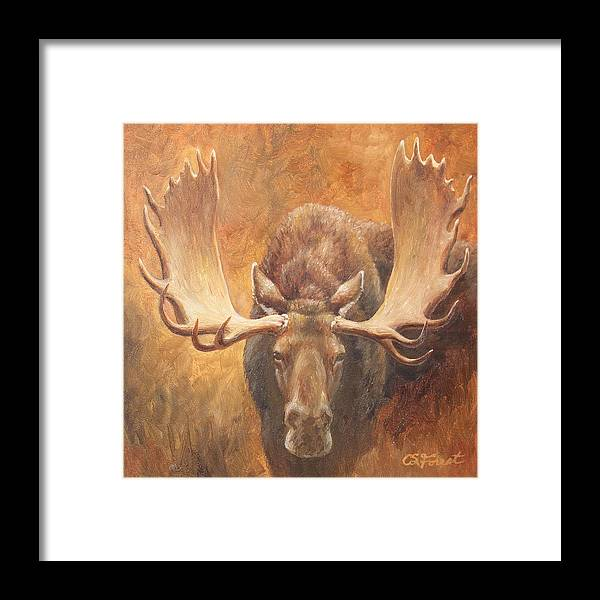 Bull Framed Print featuring the painting Bull Moose - Challenge by Crista Forest