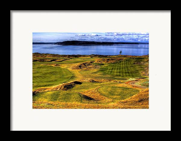 Chambers Bay Golf Course Framed Print featuring the photograph Chambers Bay Lone Tree by David Patterson