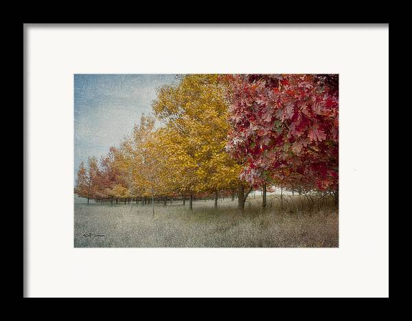 Changing Of The Seasons Framed Print featuring the photograph Changing Of The Seasons by Jeff Swanson