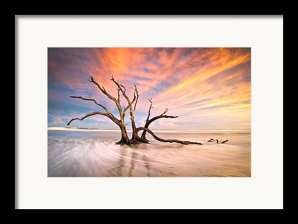 Charleston Framed Print featuring the photograph Charleston Sc Sunset Folly Beach Trees - The Calm by Dave Allen