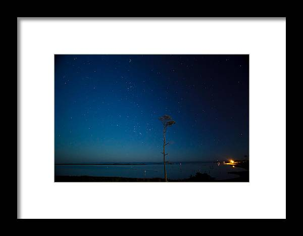 Charlie Brown Framed Print featuring the photograph Charlie Brown And Orion 2 by Paula OMalley