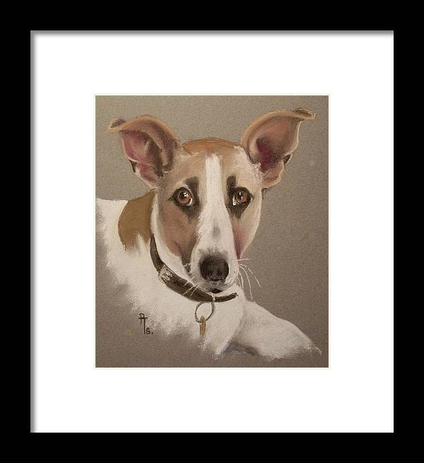 Dog Framed Print featuring the pastel Charlie by Rosemarie Temple-Smith