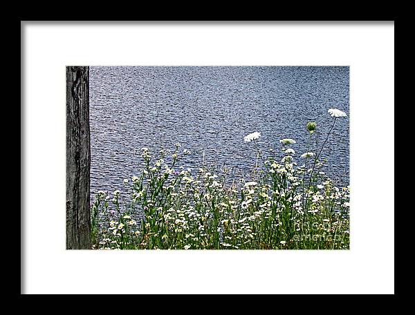 Nature Framed Print featuring the photograph Cheer by Melissa Stoudt