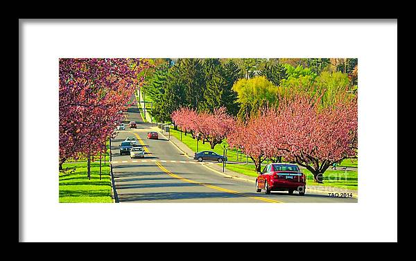 Photo Framed Print featuring the photograph Cherry Sundae by Tami Quigley