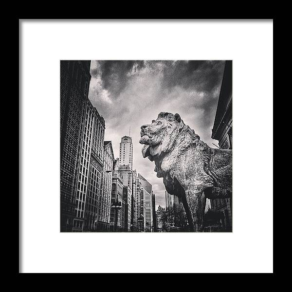 America Framed Print featuring the photograph Art Institute of Chicago Lion Picture by Paul Velgos