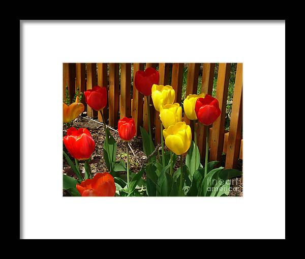 Flowers Framed Print featuring the photograph Chicago In The Spring by Linda De La Rosa
