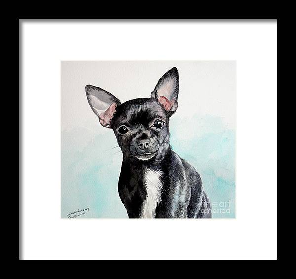 Dog Framed Print featuring the painting Chihuahua Black by Christopher Shellhammer