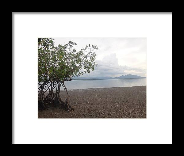 Chira Island In Costa Rica In Central America. Framed Print featuring the photograph Chira Island by Yoli Lins