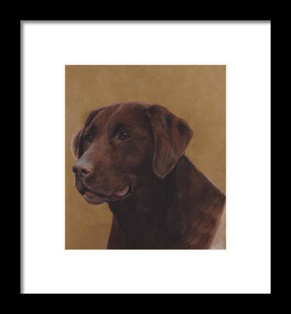 Chocolate Framed Print featuring the pastel Chocolate Lab by Loreen Pantaleone