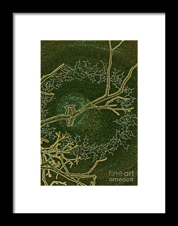 First Star Art Framed Print featuring the drawing Christmas Songbird by First Star Art