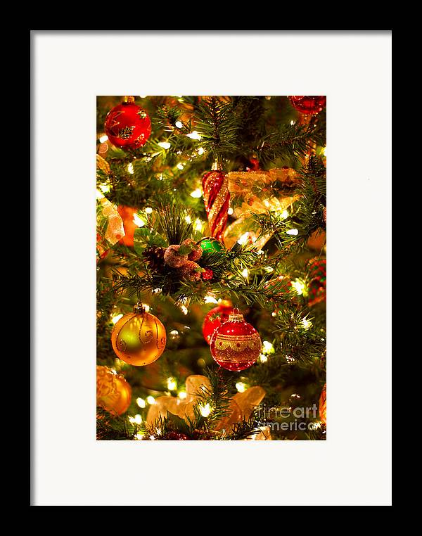 Christmas Framed Print featuring the photograph Christmas Tree Background by Elena Elisseeva