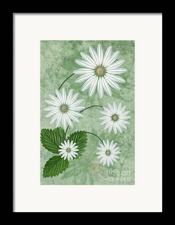 Abstract Flowers Framed Print featuring the digital art Cinco by John Edwards