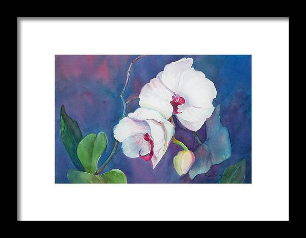 Orchid Painting Framed Print featuring the painting Circle Of Life by Sue Kemp