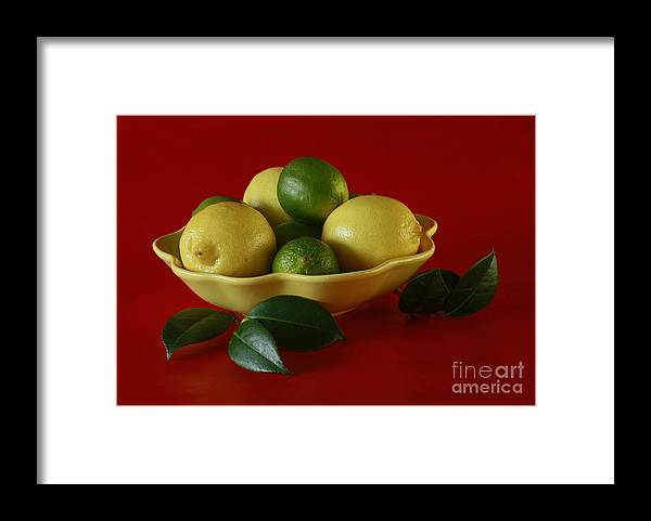 Citrus Passion Framed Print featuring the photograph Citrus Passion by Inspired Nature Photography Fine Art Photography