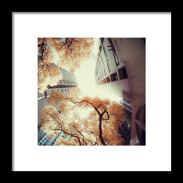 Tranquility Framed Print featuring the photograph City In Harmony With Nature by D3sign