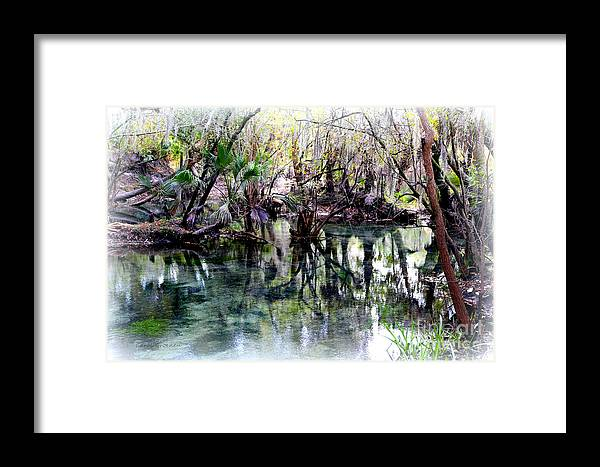 Springs Framed Print featuring the photograph Clear Florida Springs by Carol Groenen