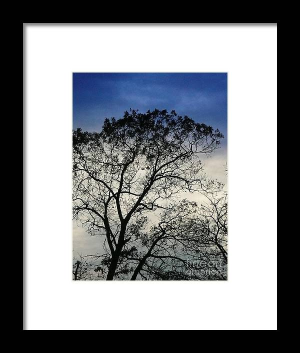 Nature Framed Print featuring the digital art Cloud Trap by Rrrose Pix