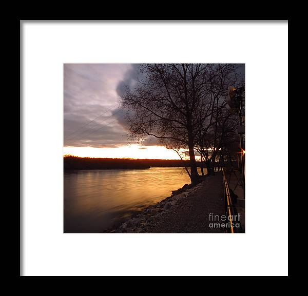 Cloud Framed Print featuring the photograph Cloud Tree by Rrrose Pix