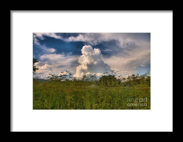Landscape Framed Print featuring the photograph Clouds In A Field by David Call