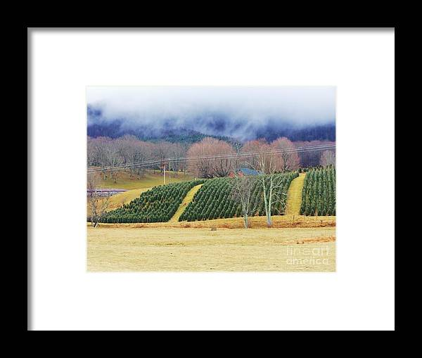 Mountains Framed Print featuring the photograph Clouds Meet Mountain by Beebe Barksdale-Bruner